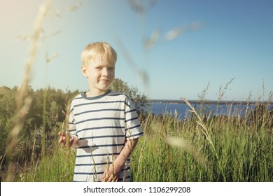 Little blond boy smiling and looking at camera on nature. Summer activity. Field with high grass.