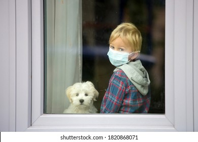 Little blond toddler child and maltese puppy dog, sitting at home with medical mask, behind the window, sad, locked down due to Covid 19 pandemic