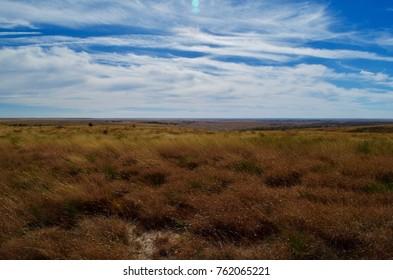 Little Bluestem Grass in Autumn Colors, Short Grass Prairie