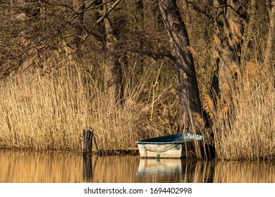 little boat on a lake with tree in sunlight