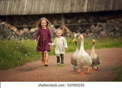 Little bother and sister chasing geese with a twig in the country in Russia. Image with selective focus and toning