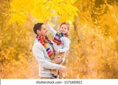 A little boy in the arms of his father. Walk in the autumn yellow forest. Family in warm clothes and colorful scarves