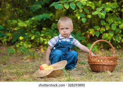 Little boy with a basket of apples in the autumn park
