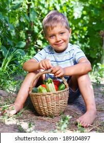 Little boy with basket of vegetables in summer garden