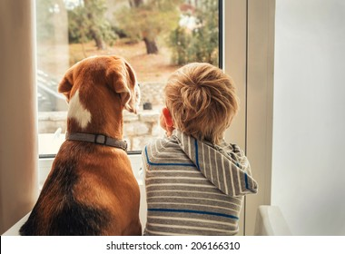 little boy with best friend looking through window