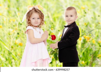 Little boy in black suit with bow tie gives a big red rose charming little girl.Summer white green blurred background.