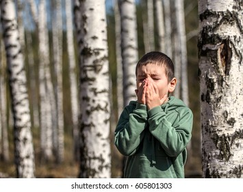 Little boy blowing her nose. Allergic to birch in early spring.
