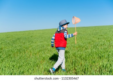 Little boy in blue hat and a red vest with a butterfly net in hand runs across the green field.