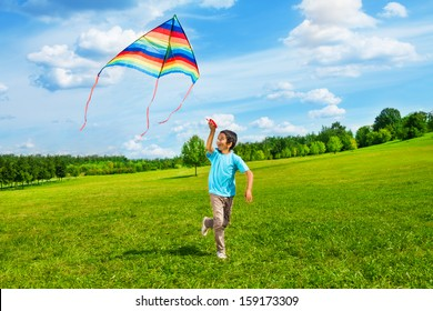 Little boy in blue shirt running with kite in the field on summer day in the park