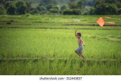 Little boy in blue shirt running with kite in the field on summer day in the rice fields.