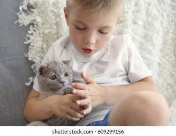 Little boy with British kitten on sofa closeup