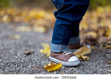 Little boy in brown shoes standing on leaves