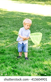 Little boy catching butterflies with scoop,