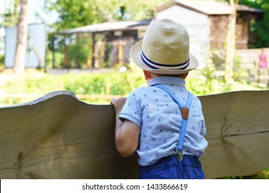 Little boy child in straw hat and t-shirt with anchor pattern looking forward over wooden plank fence outdoors in sunny summer day, back view with copy space.