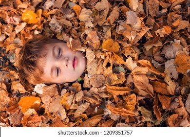 Little boy covered up to head in autumn leaves and smiling to the camera