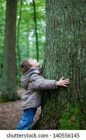 Little boy embracing the big tree trunk in the forest