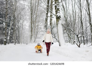 Little boy enjoying a sleigh ride. Mother/grandmother/nanny sled his cute child. Family winter activities outdoors.