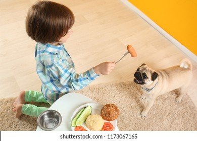 Little boy feeding cute pug dog with sausage at home
