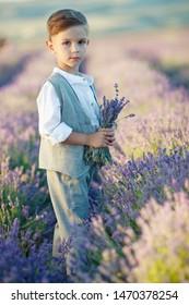 Little boy in a field with flowers.