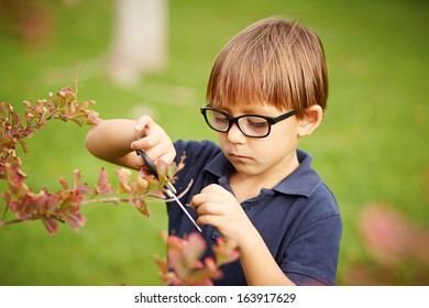 Little boy gardening outdoors on grass background