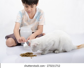 Little boy giving food for cat