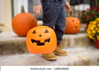 Little boy at halloween celebrations party. Child holds a bucket shaped like a halloween pumpkin jack o lantern. Halloween - traditional american holiday.