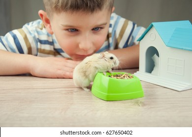 Little boy with hamster.