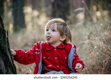 little boy having fun in beautiful autumn park or forest on sunny day. Cute little baby is playing with leaves in spring park. Lifestyle. Happy childhood.