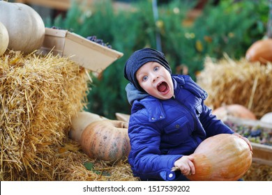 Little boy having fun on a tour of a pumpkin farm at autumn. Child holding the giant pumpkin. Pumpkin is traditional vegetable used on American holidays - Halloween and Thanksgiving Day