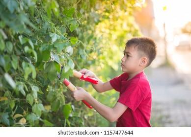 Little boy help to cut grass on the street
