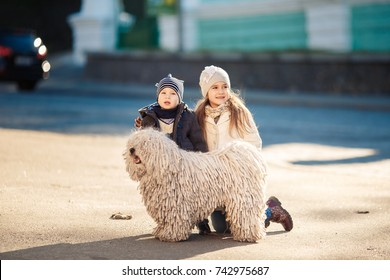 Little boy with her sister and a dog in city.