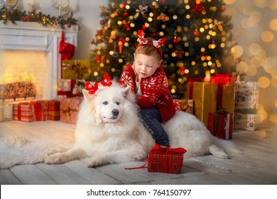 Little boy with his  dog at Christmas Eve