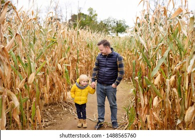Little boy and his father having fun on pumpkin fair at autumn. Family walking among the dried corn stalks in a corn maze. Traditional american amusement on pumpkin fair.