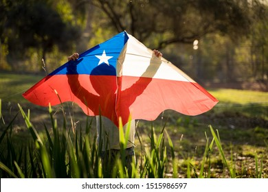 Little boy holding a kite with the chilean flag