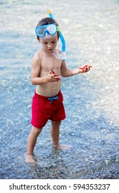 Little boy holding red five point starfish and net in his hands on the beach