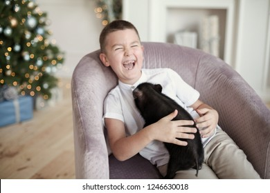 Little boy honest smiling playing with black mini pig