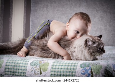 little boy hugging a cat on a sofa