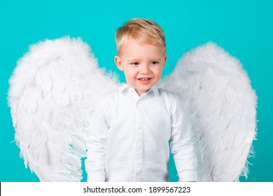 Little boy kid with wings dressed like an angel, isolated