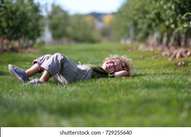 A little boy is laying in the grass in the middle of an apple orchard on a sunny day
