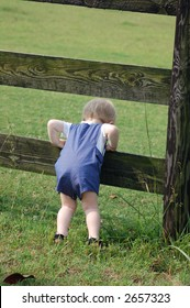 little boy looking over a fence