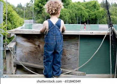 A little boy is looking over the fence watching older children play games. He has blonde curly hair and is wearing blue overalls. It is a sunny summer day. Fun, active child.