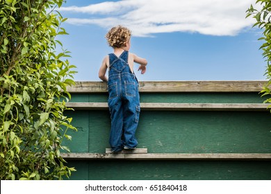 A little boy is looking over the fence watching older children play games over the wall. He has blonde curly hair and is wearing blue overalls. It is a sunny summer day. Fun, active child. Large wall