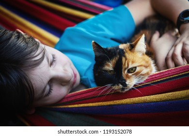 Little boy lying in the hammock with his cat