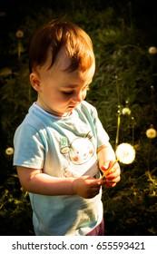 Little boy lying summer flower vertical