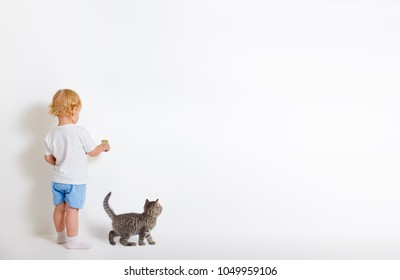 Little boy with paint brush and small cat standing back near white wall