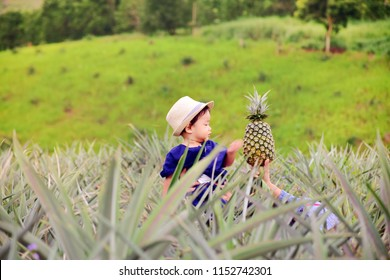 A little boy in pineapple plantation