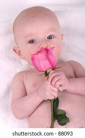 Little Boy with Pink Rose