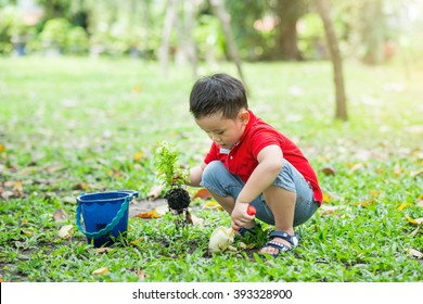 Little boy planting. Asian boy with tree on lawn