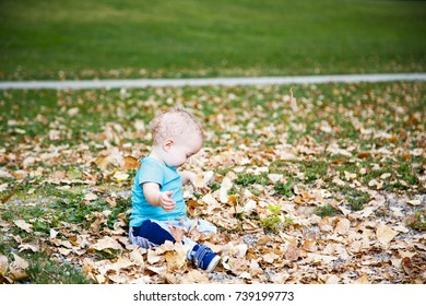 Little boy playing with autumn leaves in park.