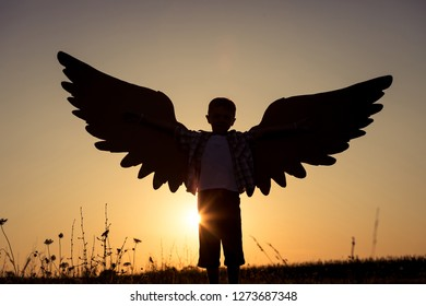 Little boy playing with cardboard toy wings in the park at the sunset time. Concept of happy game. Child having fun outdoors.